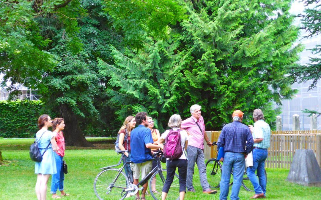 Promenade forestière, arborée, paysagère et sociale en milieu urbain