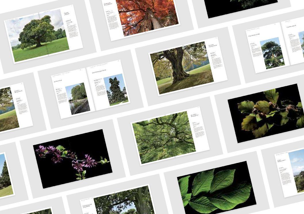 Ouvrage : «Des arbres remarquables – 41 histoires enracinées à Genève»