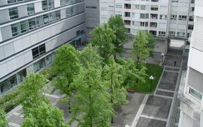 Journée technique: «Transition végétale face au climat»